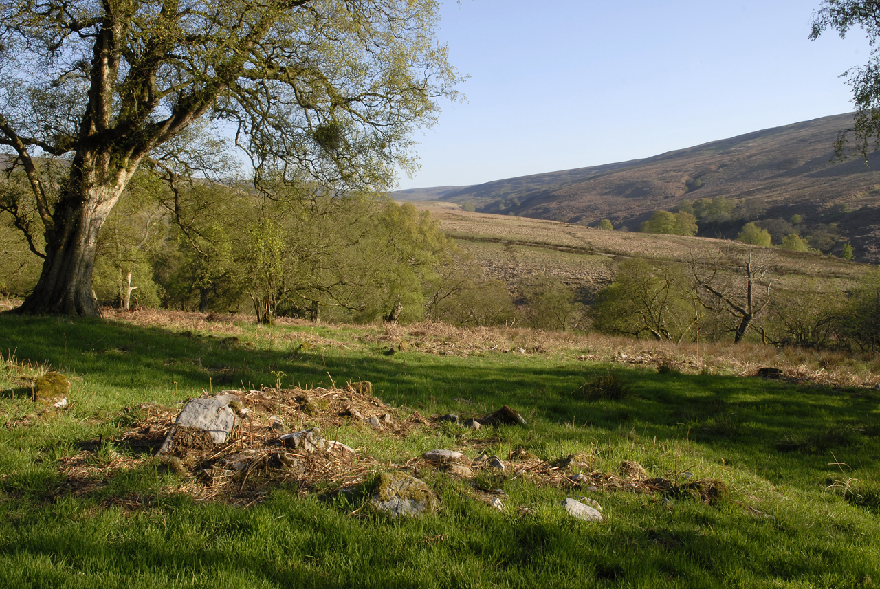 Circular archaeological feature Geltsdale